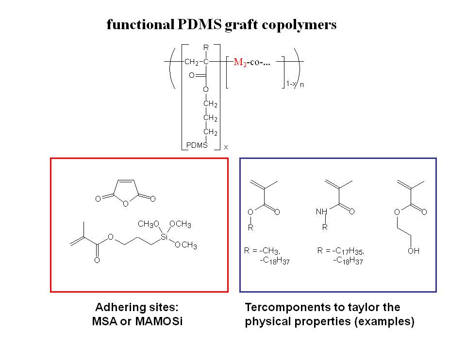 Scheme 6.2: Prepared PDMS-Graft-Copolymers by copolymerization of PDMS-MA macromonomers