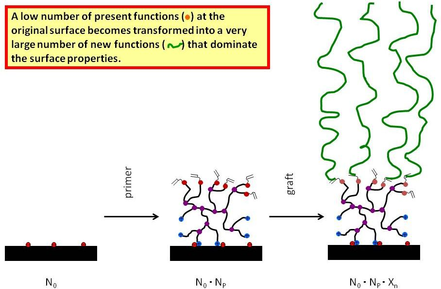 Figure 3.1:  Functional group multiplication by Quat-Primer adsorption / polymerization